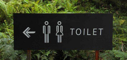 Toalet, slika: https://www.pexels.com